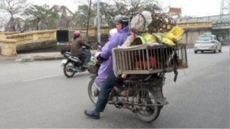 Những chiếc xe máy thồ đủ thứ như này nhan nhản trên đường phố Hà Nội.