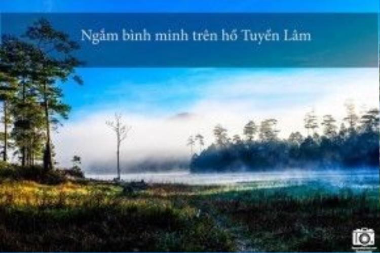 Bạn hãy dậy rất sớm rồi đi bộ ra chỗ bến thuyền. Lúc bình mình trên hồ có sương mù dày đặc, phía xa là dãy núi Voi hùng vĩ càng làm cho khung cảnh nơi đây như một bức tranh thuỷ mặc tuyệt đẹp.