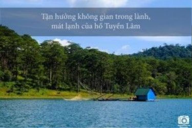 Hồ Tuyền Lâm được coi là viên ngọc bích giữa núi rừng Tây Nguyên.