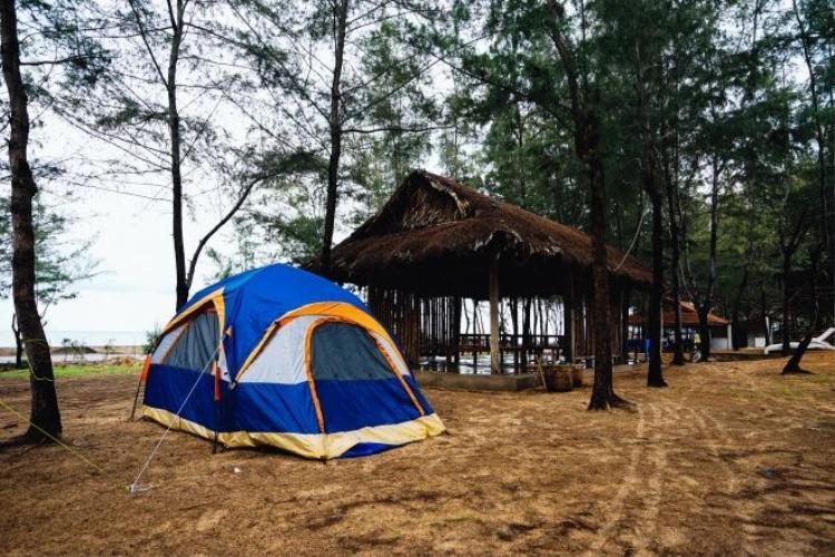 Siêu gần Sài Gòn, khu cắm trại mới toe này sẽ cực hot trong tương lai