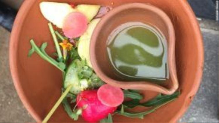 Thực đơn của Bunyadi có các món mặn và món chay, đều được chế biến từ thực phẩm hữu cơ. Món khai vị này có táo muối, dưa chuột trộn và súp rau củ.