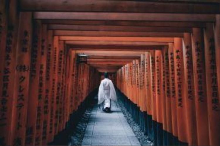 Đền thờ Fushimi Inari tọa lạc trên núi Inari nhằm thờ phụng nữ thần gạo và thịnh vượng. Điểm nhấn ấn tượng chính là sắc đỏ của con đường dẫn lên đền thờ.