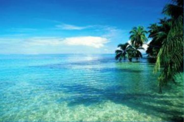 Những bức ảnh chụp trên đảo Moorea quá ấn tượng khiến nhiều người nghĩ chúng được chỉnh sửa bằng photoshop.