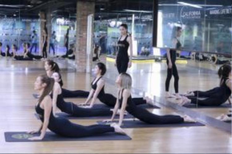 Những bài tập Yoga cơ bản của huấn luyện viên Hồ Ngọc Hà