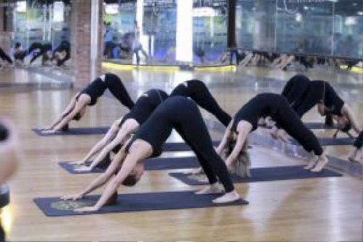 Các thí sinh phần nào hiểu được lợi ích từ việc tập Yoga