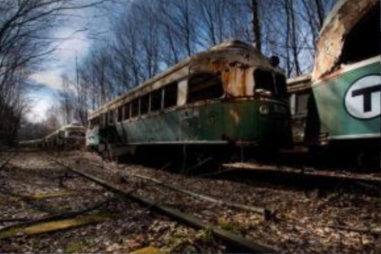 Trong số rất nhiều ảnh chụp còn lưu lại những con tàu không được dùng đến vẫn còn nằm mãi trên tuyến đường sắt.