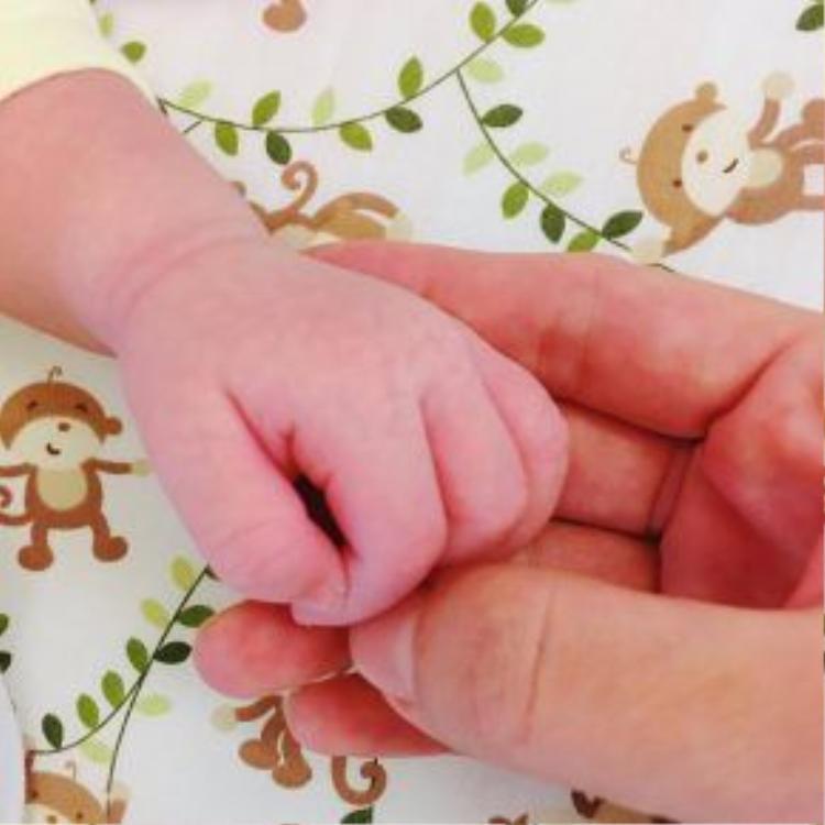 Bức hình bàn tay của bé Misu nhanh chóng thu hút rất đông sự quan tâm của mọi người.