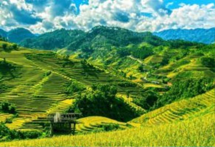 Ruộng bậc thang ở vùng núi phía Bắc Việt Nam - nơi ẩn hiện những con đường mòn thú vị bậc nhất thế giới, len lỏi qua những tán rừng thấp, khe suối…