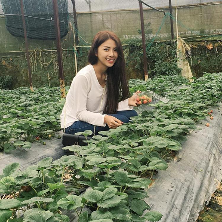Hiện cô nàng đang làm kinh doanh, và luôn là hậu phương vững chắc của Phan Mạnh Quỳnh.