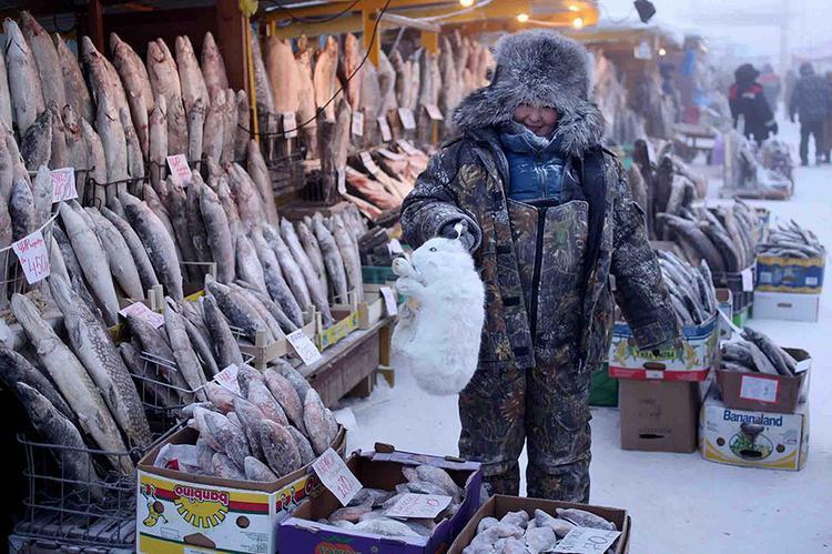 Khu chợ trung tâm chỉ toàn cá với thịt, vì không loại hoa màu nào mọc lên nổi tại nơi đây.