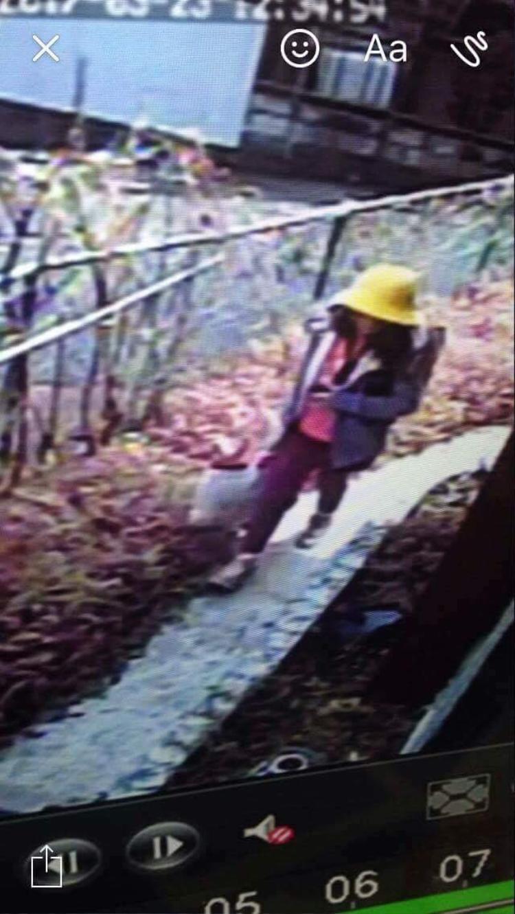 Phát hiện thi thể bé gái 10 tuổi, không quần áo trên cánh đồng ở Nhật Bản