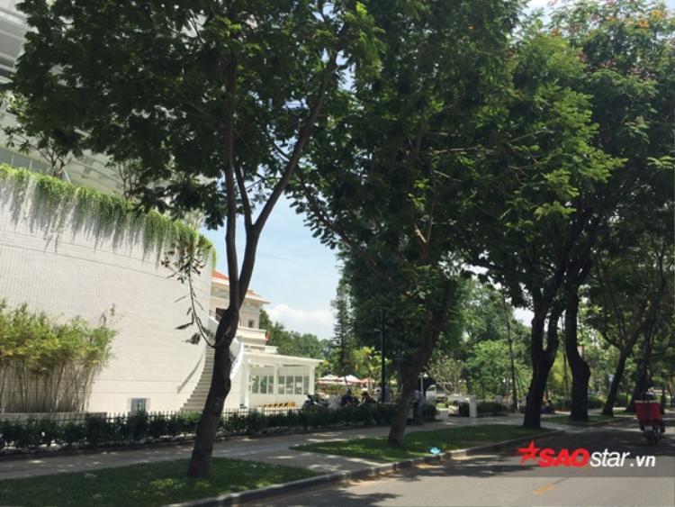 Cả 3 con đường bao quanh đều phủ đầy bóng râm của cây xanh. Vị trí đắc địa này quả là quá lí tưởng cho giới trẻ những ngày hè nóng nực như thế này!