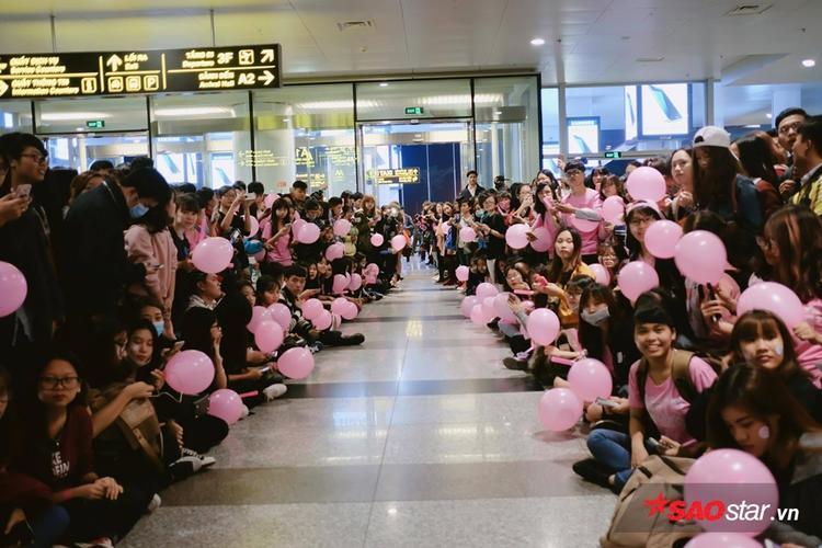 Fan SNSD xếp hàng ngay ngắn tại sân bay Nội Bài vào tối 31/3.