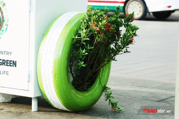 Trải nghiệm sử dụng thùng rác có khả năng nuôi cây xanh đầu tiên ở Việt Nam