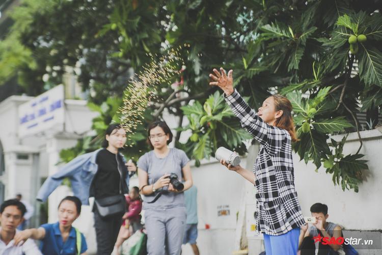 Đàn chim theo tiếng lon đậu lắc kéo nhau bay về ăn đậu từ khách du lịch và các em nhỏ trước trường Hòa Bình.