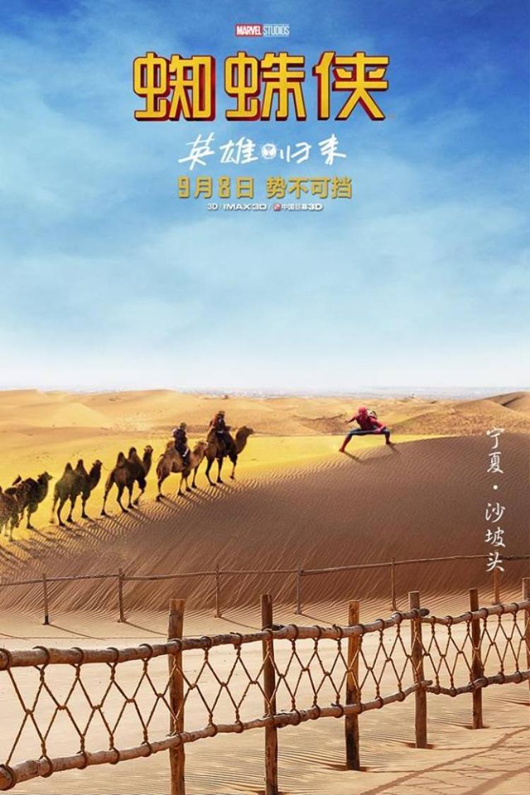 Cưỡi lạc đà trên sa mạc.