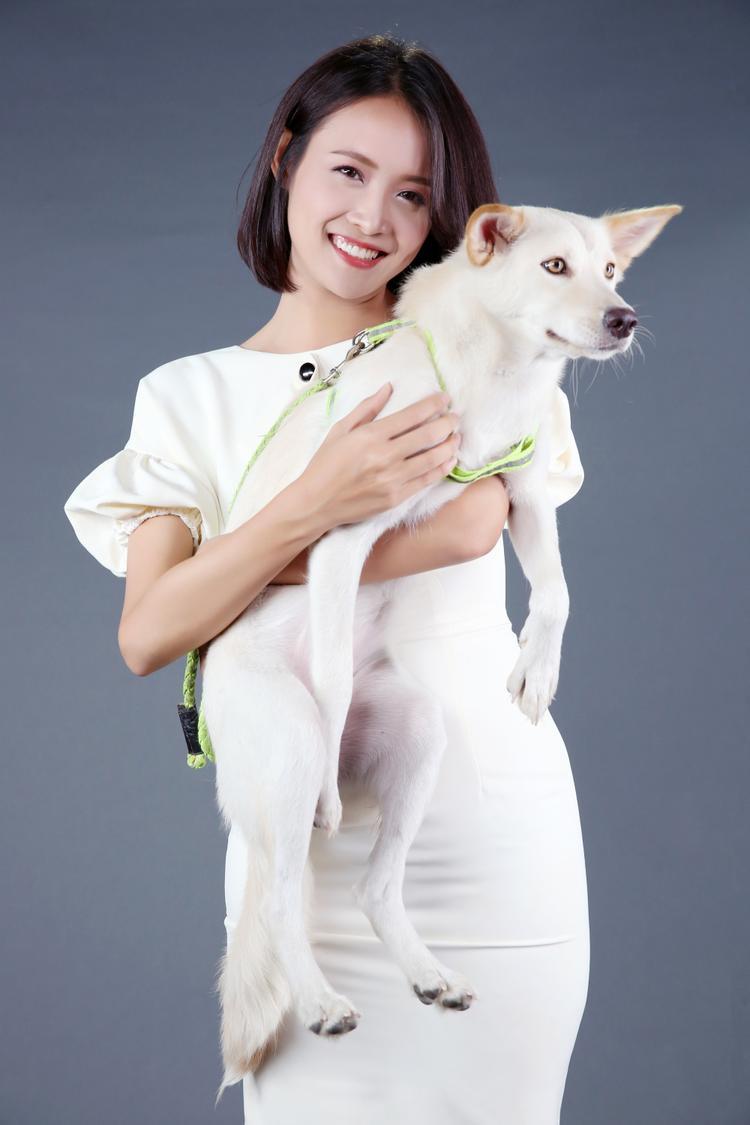 Trương Mỹ Nhân: Tôi căm ghét những kẻ trộm chó và muốn có biện pháp mạnh giải quyết vấn nạn này