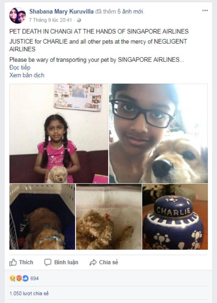 Làm chết chó cưng của hành khách, hãng Singapore Airlines liệu có phải bồi thường?