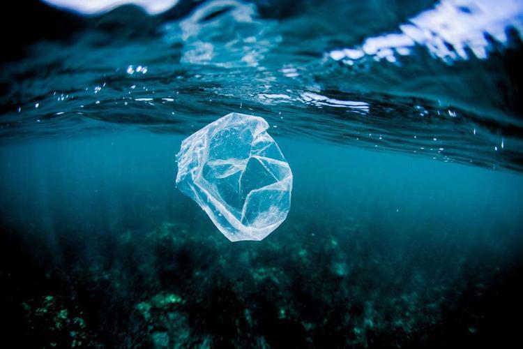 Ô nhiễm nhựa - vấn nạn nan giải hiện nay trong môi trường biển.