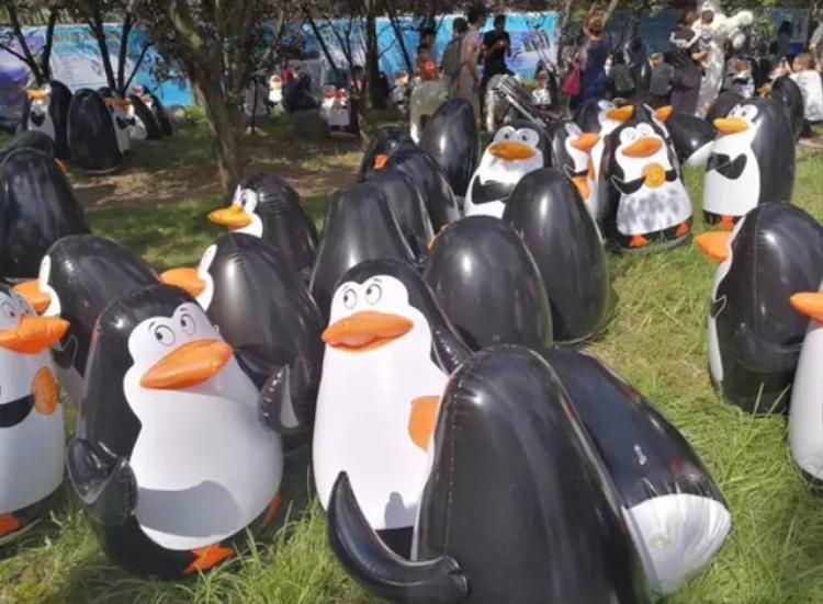Và đây là sự thật đàn chim cánh cụt được vận chuyển từ Nam Cực