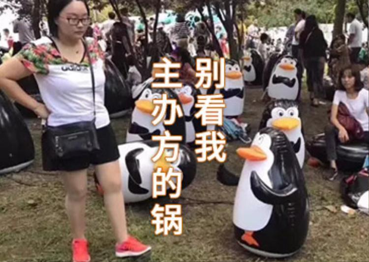 Kéo đến công viên để được ngắm chim cánh cụt thật, nào ngờ chỉ thấy chim nhựa
