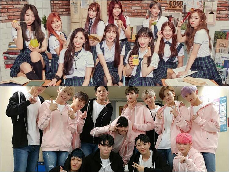 Seventeen hiện đang là nhóm nhạc nổi bật nhất của Pledis. Trong khi đó, Pristin - nhóm nữ mới của Pledis dù sở hữu nhiều nhân tố hút fan nhưng vẫn chưa thể bật lên được vì gout âm nhạc của nhóm quá kém chất lượng.