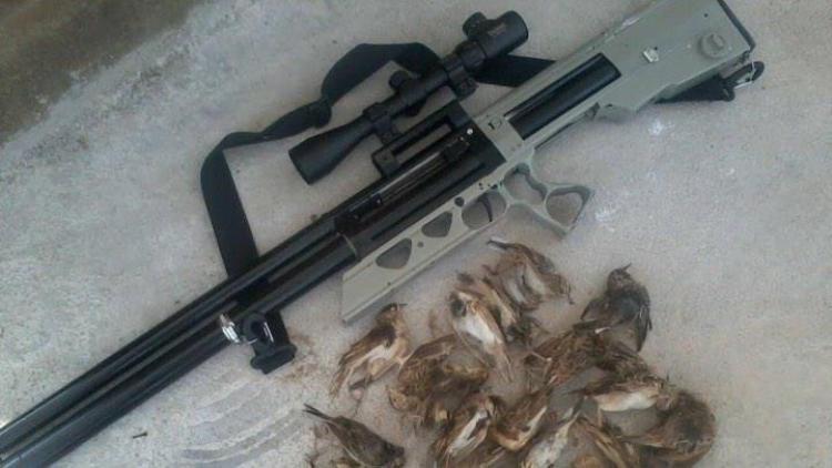 Chiếc súng dùng dể bắn chim.