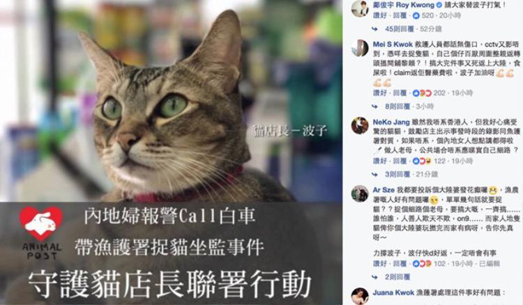 Trong vòng 24 giờ, gần 70.000 người ký đơn giải cứu chú mèo bị tạm giam