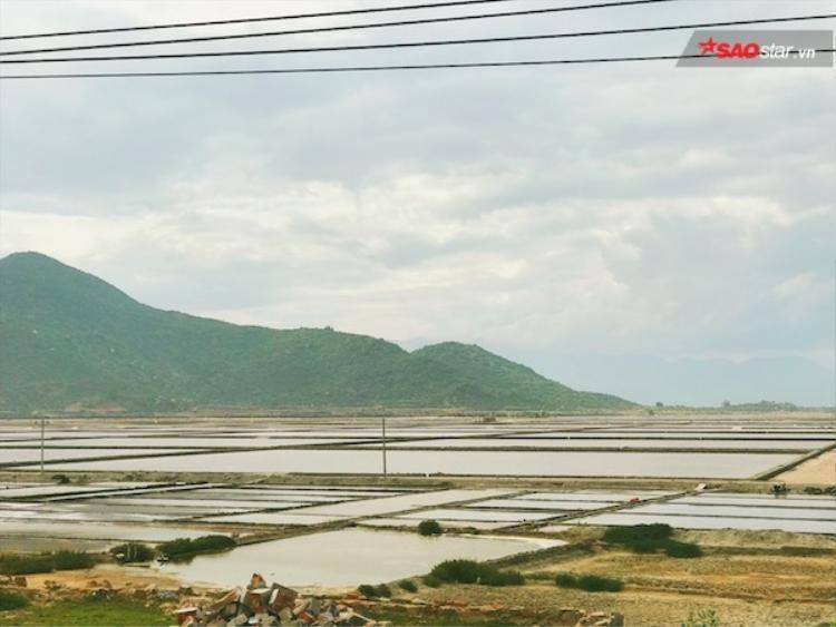 Hoà mình vào thiên nhiên trên cung đường biển Phan Rang  Cam Ranh tuyệt đẹp