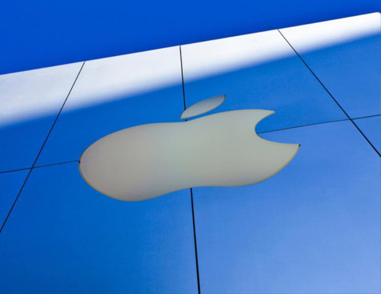 Vết cắn (tiếng anh là bite) đồng âm với từ byte (một đơn vị tính quan trọng trong máy tính) khiến logo Apple càng thêm ý nghĩa. Thế nhưng ở thời điểm logo ra đời, dường như không có ai nghĩ đến điều này.