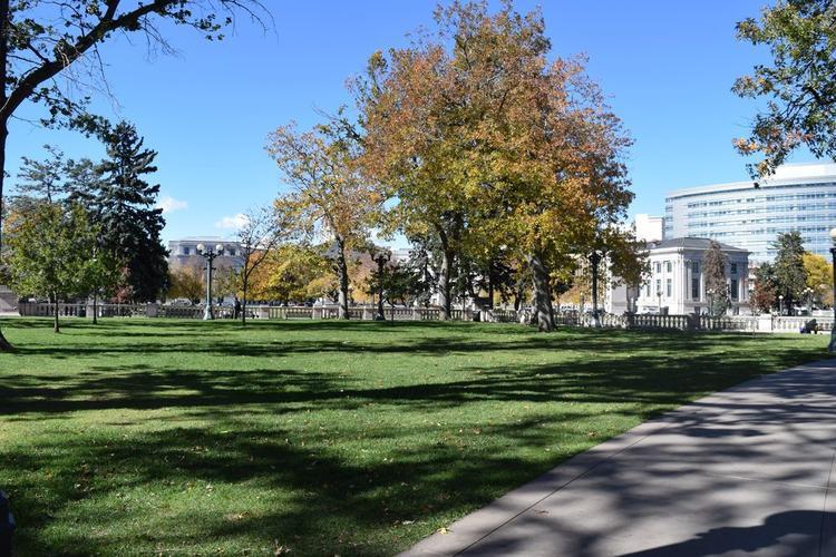 Công viên: Denver có rất nhiều công viên yên bình tuyệt đẹp. Nếu bạn có thời gian, hãy tìm một nơi, nghỉ ngơi và thư giãn một chút.