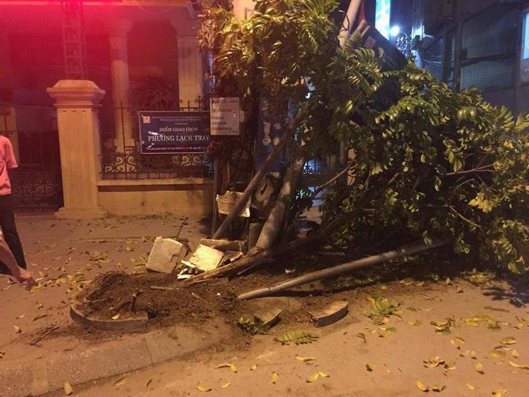 Sau khi đâm bật gốc cây sấu ở UBND phường Lạch Tray, thanh niên lái xe đã lùi xe và chạy mất.