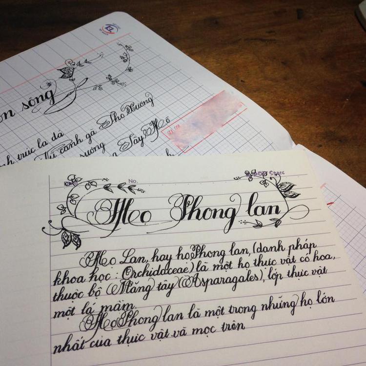 Cô giáo luyện chữ đẹp ở Hà Nội: Có thời điểm nhắm mắt vào chỉ thấy chữ, mở mắt ra chỉ nghĩ đến học sinh