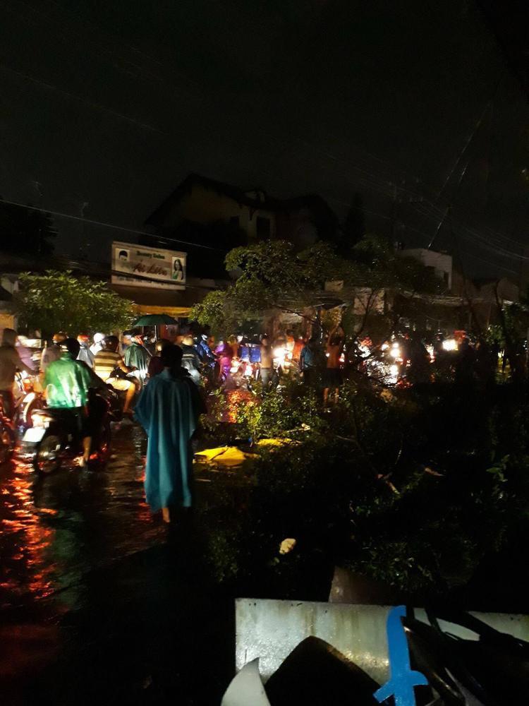 Mưa gió, cây đổ khiến việc di chuyển của người dân khó khăn. Anh chụp ại Bình Dương chiều tối 18/11 - (Ảnh: Facebook Hồng Trịnh).