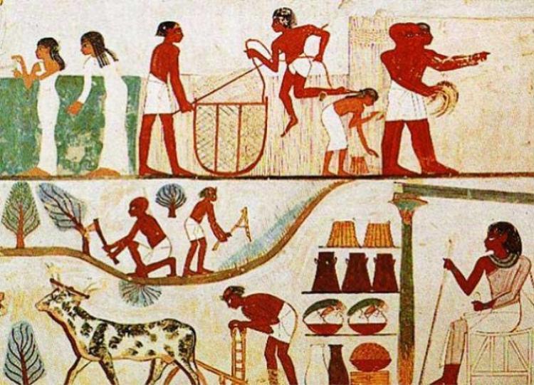 Tuy thô sơ nhưng kháng sinh đã xuất hiện từ thời Ai Cập cổ đại.
