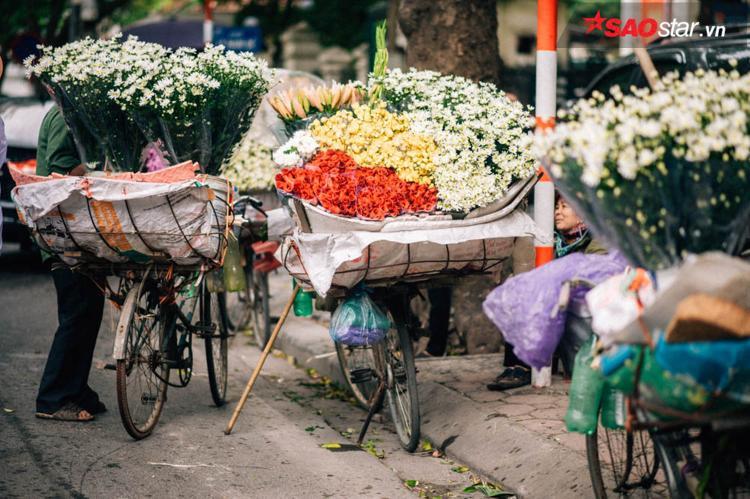 Mùa này, người bán hoa chủ yếu bán họa mi.