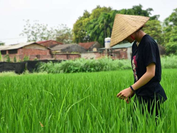 Đường Lâm (Hà Nội, Việt Nam) là một trong những ngôi làng cổ xưa thực sự ở châu Á.