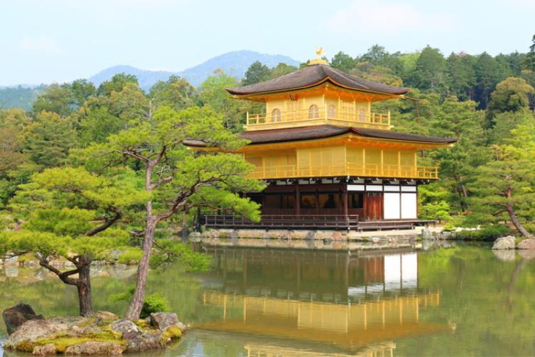 """2. Chùa Kinkakhu-ji:Chùa Kinkakhu-ji hay """"Ngôi chùaVàng"""", là một trong những địa điểm biểu tượng nhất ở Nhật Bản.Ngôi chùa gồm 3 tầng được dát vàng xung quanh với lối kiến trúc độc đáo và tinh xảo. Dưới làn nước trong xanh, tĩnh lặng của hồ Kyoko-chi, hình ảnh ngôi chùa lấp lánh ánh vàng cùng với màu xanh của cây lá như một bức tranh thủy mặc tuyệt đẹp."""