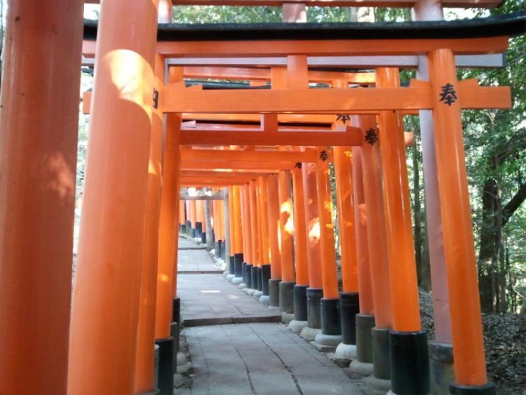 4. Khu đền ngàn cổng Fushima Inari:Đây là đền thờ quan trọng thờ phụng Inari, nữ thần gạo, thịnh vượng tại Nhật Bản. Người dân đến đây để cầu xin sự giàu có, thành công và chiêm ngưỡng vẻ đẹp của đền. Điểm nhấn của đềnlà các cổng Torii (cổng đền Nhật Bản) dọc theo các con đường mòn trên núi. Đi trên con đường dày đặc cổng, bạn sẽ có cảm giác như đi trong một đường hầm linh thiêng.