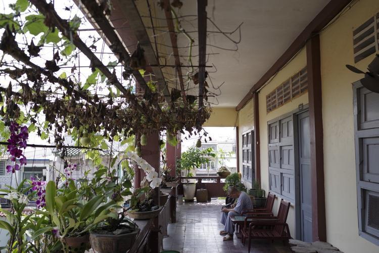 Chùa Huệ Nghiêm được Hòa thượng Thích Thiện Hòa khai lập vào ngày 11/11/1962, là nơi tu học của nhiều chư tăng trong suốt chiều dài lịch sử của mình.