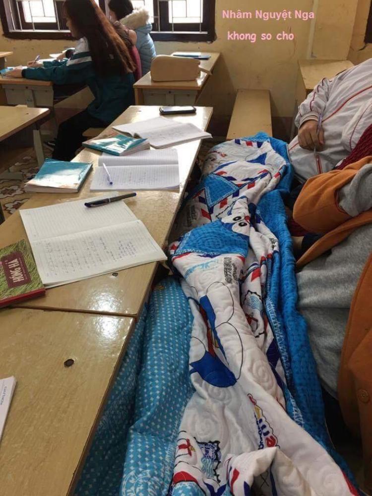 Có tấm chăn này ngày lạnh để đắp chân khi ngồi học thì còn gì ấm áp bằng?
