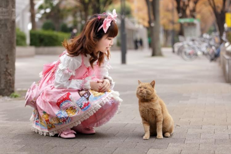Vì không gian nhỏ hẹp cùng bận rộn công việc, người Nhật thường thuê thú cưng để chăm sóc.