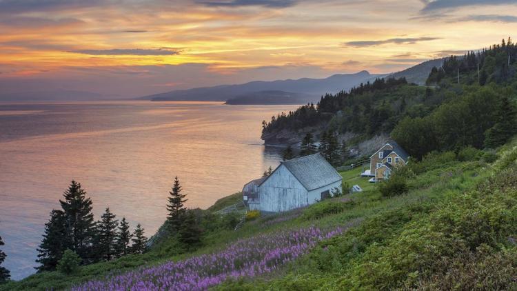 Québec, Canada: Bán đảo Gaspe được biết đến với rừng thông, những vách đá ấn tượng cũng như 14 ngọn hải đăng.