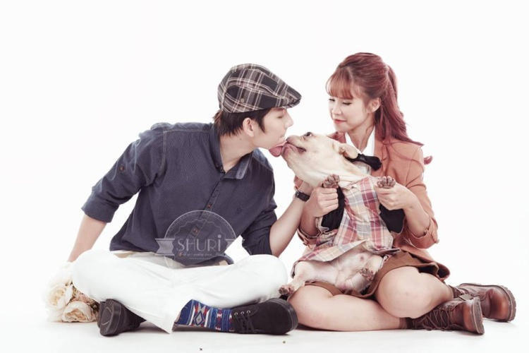 Chú chó cưng của Kelvin Khánh - Khởi My cũng xuất hiện trong bộ ảnh cưới.