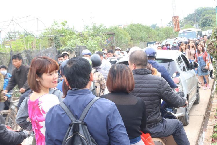 Cung đường dẫn vào khu vực vườn hoa Nhật Tân chiều 26/11. Ảnh: Mai Anh.
