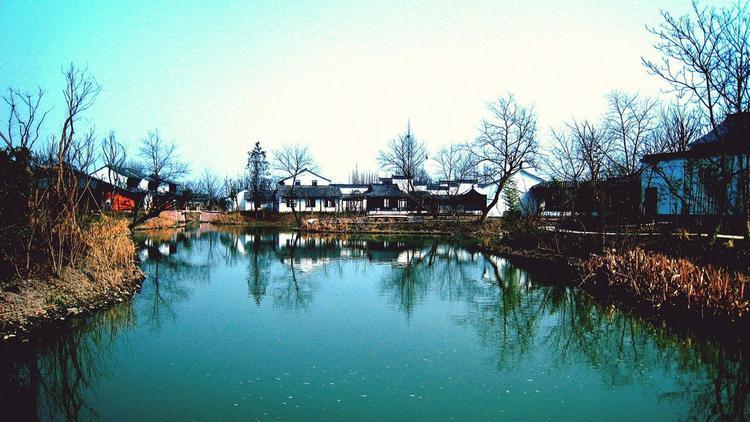 Vườn quốc gia Xixi mang vẻ đẹp cổ kính và hoài niệm.