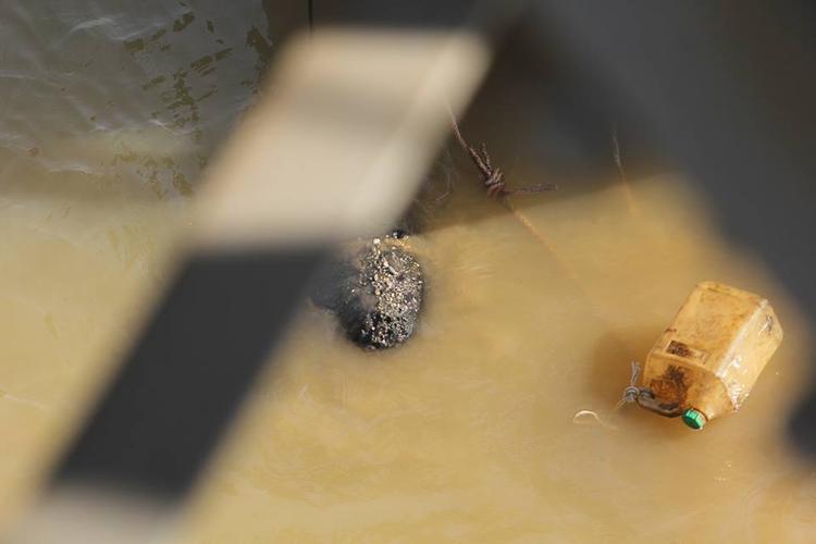 Trục vớt quả bom dài hơn 2m dưới gầm cầu Long Biên