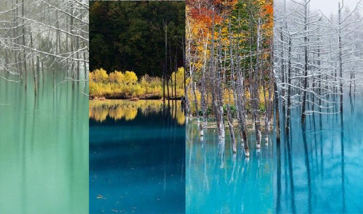 Mỗi mùa qua đi, hồ nước Xanh lại được lật qua trang màu mới. Một nhiếp ảnh gia đã bám trụ ở đây trong suốt một năm để chụp được những thời khắc giao mùa độc nhất vô nhị này.