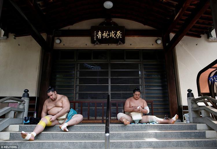 Môn võ sumo có tất cả 6 cấp khác nhau là Makuuchi, Juryo, Makushita, Sandanme, Jonidan và Jonokuchi. Chỉ những võ sĩ nào đã đạt đến đẳng cấp Juryo trở lên mới được xem là võ sĩ sumo chuyên nghiệp thật sự, gọi là Sekitori và được trả lương.