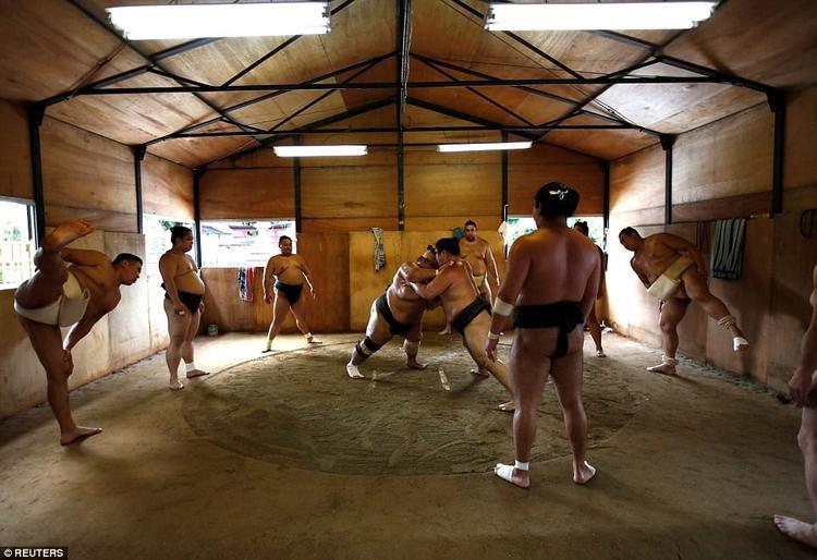 Tomozuna là một trong 6 người Mông Cổ đầu tiên trở thành võ sĩ sumo ở Nhật năm 1992. Theo Reuters, nhập quốc tịch Nhật Bản là yêu cầu để trở thành một bậc thầy sumo (hay còn gọi là oyakata)
